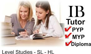 IB ITGS (information technology in a global society) project extended essay help tutors example samp